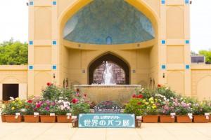世界のバラ展 記念撮影スポット 圧縮