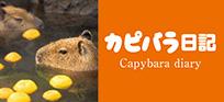 banner_capybara_diary
